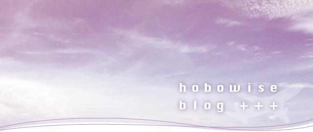 hobowise blog